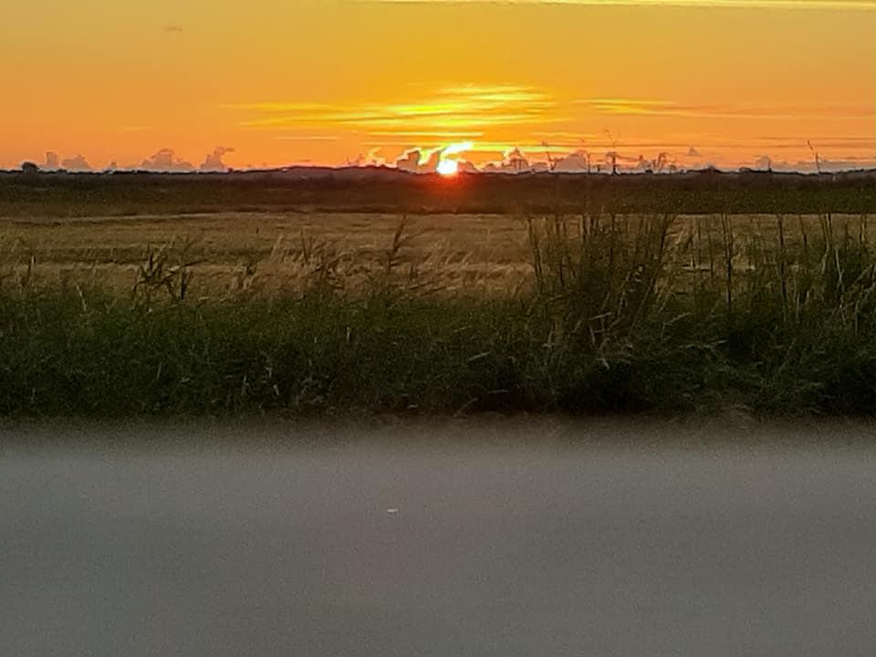 Guinguette avec vue sur coucher de soleil